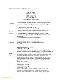 Resume Examples With No Job Experience Good For Highschool Students