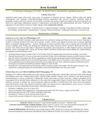 Sample Resume For Credit Manager