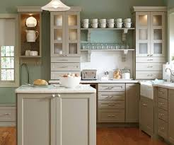 kitchen cabinet painting and cabinet refinishing denver home