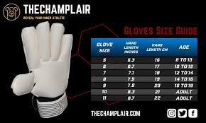 10 Best Goalkeeper Gloves 2019 For Your Games