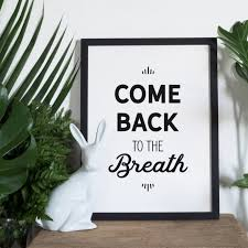 Wall Art Quotes Fascinating Come Back To The Breath Mindfulness Quotes For Your Walls