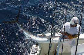 <b>2018 Brand New Simms</b> outdoor sport Men fishing cap letter fishing ...