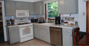 Modern Grey Kitchen Cabinets Grey Kitchen Cabinets With White Appliances Quicuacom