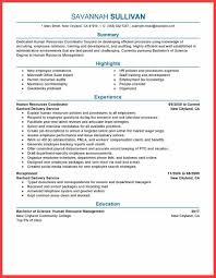 HR Resume CV Templates   HR Templates  Free   Premium     Template net