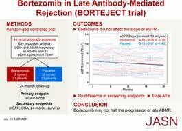 A Randomized Trial Of Bortezomib In Late Antibody Mediated Kidney