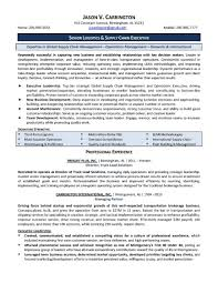 Executive Resume Samples Free Executive Resume Samples Best Solutions Of Cv Cover Letter Cio 16