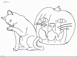 Kitty Cat Coloring Pages Free Zabelyesayancom
