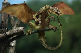 real mythical creatures found alive. Fine Creatures Real Dragons Found Alive  Google Search To Real Mythical Creatures Found Alive