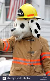 sparky the fire dog book. sparky fire dog parade fireman mascot dalmation - stock image the book g