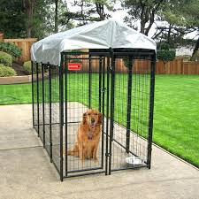 dog pen divider glamorous age for dogs dog crates grass outdoor dog large cage