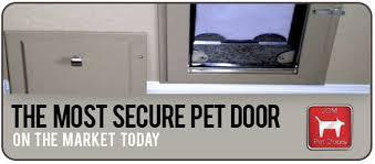 custom dog door installation in phoenix