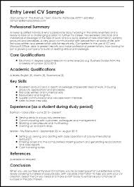 Entry Level Job Resume Templates Entry Level It Resume Template Meltfm Co