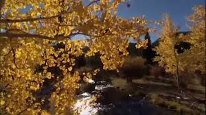 Beautiful Pictures Of Nature Beautiful Nature Autumn 720p Hd Youtube