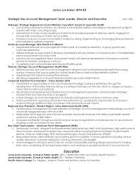 Advertising Account Executive Resume Mesmerizing Account Manager Resume Sample Recent Posts Assistant Account Manager