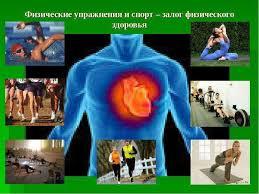 Физическое здоровье доклaд База фотографий Физическое здоровье челов Способность приспосабливаться к изменениям в