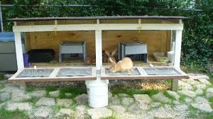 rabbit hutch plans buy pallet furniture design plans