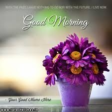 Purple Flower Quotes Good Morning With Flowers Quotes Name Pix