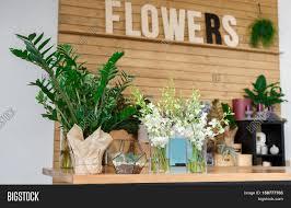 Modern Flower Shop Interior Design Small Business Modern Image Photo Free Trial Bigstock