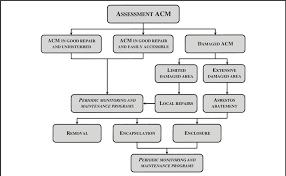 Asbestos Management Plan Flow Chart Flowchart For Acm Assessment Download Scientific Diagram