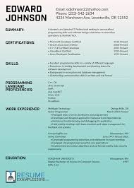 It Resume Examples Amazing IT Resume Examples 100 15