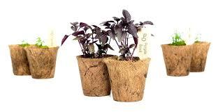 starter herb garden kit outdoor smart grow h