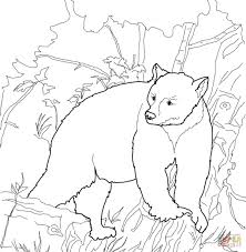 For Kid Coloring Page Of A Bear 74 With Additional Free Coloring