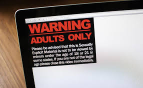 To Lifesite Passes Porn Study Internet Motion News Parliament Unanimously Of Canada's Dangers