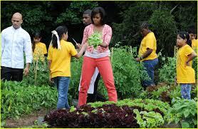 Michelle Obama Kitchen Garden Michelle Obama Harvests The White House Kitchen Garden Photo