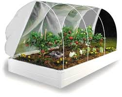 raised bed garden kit and greenhouse