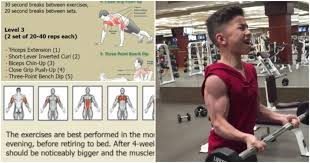 bigger arms in 4 weeks increase arm muscle strength and size