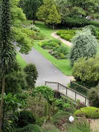 man accused of indecent act at dunedin botanic gardens