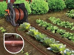 genesis drip irrigation system