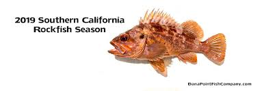 California Rockfish Chart 2019 California Rockfish Fishing Regulations For Southern