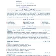 Free Resume Templates Perfect Resume Examples Resume Examples In