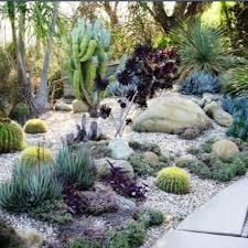 Small Picture 438 best Desert landscaping ideas images on Pinterest Desert