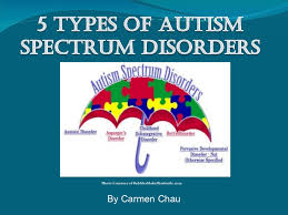 types of autism spectrum disorders 5 types of autism spectrum disorders photo courtesy of bubblesmakehimsmile com by carmen chau