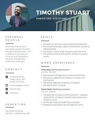 Modern Professional Resume Use This Template Resumee