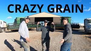 Crazy Train Light Show Crazy Grain Crazy Train Parody