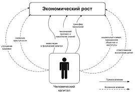 Оценка качества человеческого капитала как фактора производства  Каналы влияния человеческого капитала на экономический рост