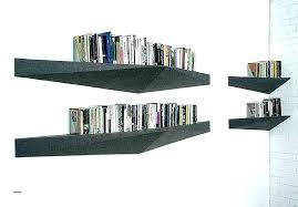 Shelving Ideas For Living Room Best Shelf Living Room Drugsfree