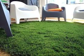 installed fake grass carpet in living room artificial turf rug indoor outdoor green area 9x12