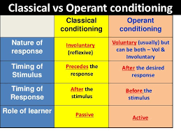Classical Conditioning In The Classroom Classical Vs Operant Conditioning Operant Conditioning