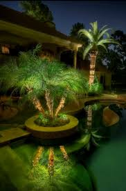 tropical outdoor lighting. Pool Landscaping Ideas. IdeasTropical Backyard LandscapingPalm Trees LandscapingTropical GardenOutdoor LightingUnique Tropical Outdoor Lighting