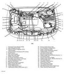 similiar 1999 ford contour transmission keywords 1998 ford contour vacuum hose diagram likewise 1996 ford contour
