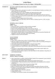 Lead Auditor Resume Samples Velvet Jobs