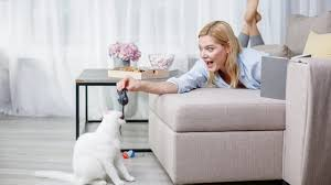 5 Fun, Easy Games To Play With Your Cat [VIDEOS] - CatTime