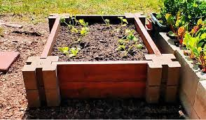 building a diy raised vegetable garden bed