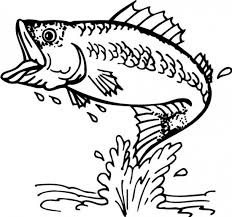 Small Picture Bass Fish Coloring Pages Animals Pinteres