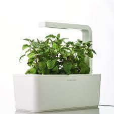 Herb Garden Kit Ideas Dwesa Org