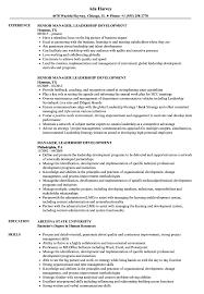 Manager Leadership Development Resume Samples Velvet Jobs